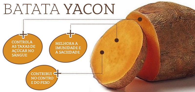 batata yacon info